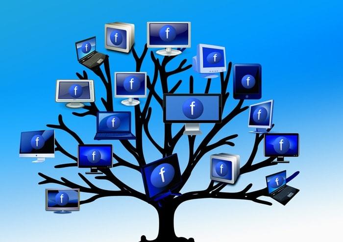 árbol de facebook