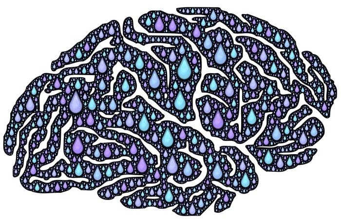cerebro-social-media-min