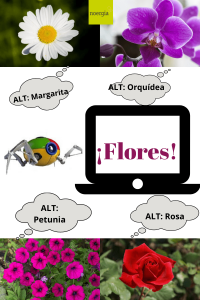 La etiqueta ALT describe la temática web